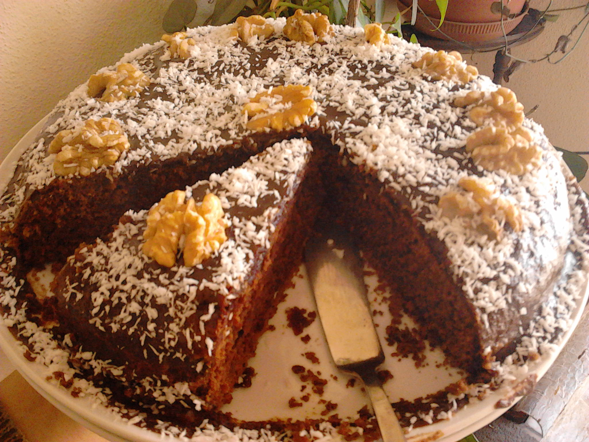 Cocoa Cake with Wheat Germ